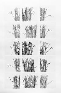 15-fils et brindilles 2014 15 monotypes sur papiers japon marouflés sur papier arches 400g 120 x 80 cm